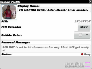 the fake bbm profile
